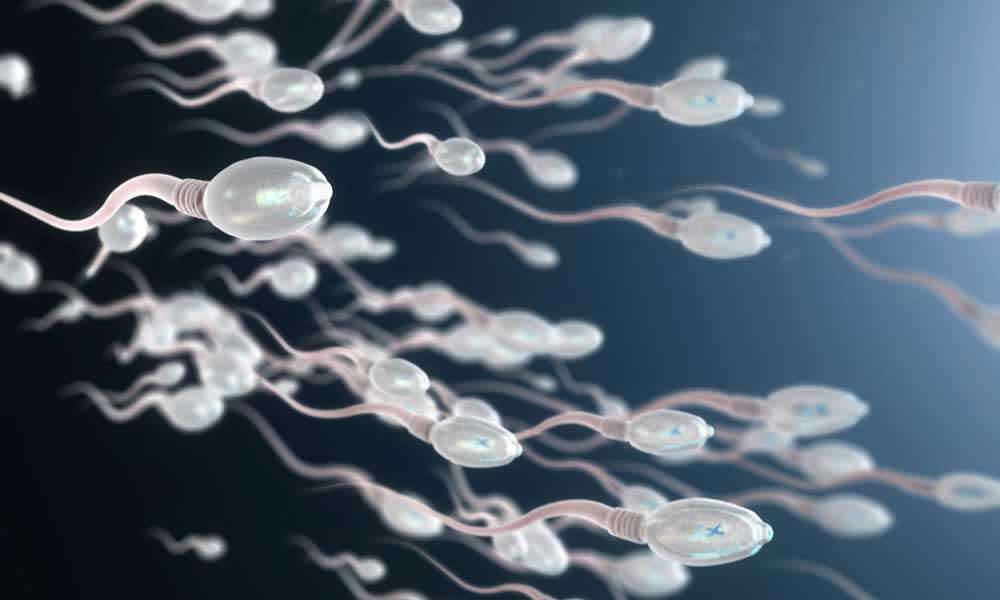 Does Smoking Pot Affect The Taste Sperm?