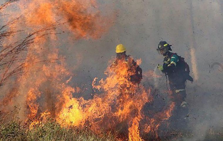 El gobierno ha declarado la situación de desastre nacional ante la magnitud de los incendios forestales en varias regiones del país