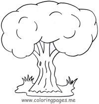 Juegos De Arboles Para Colorear Imagenes De Arboles