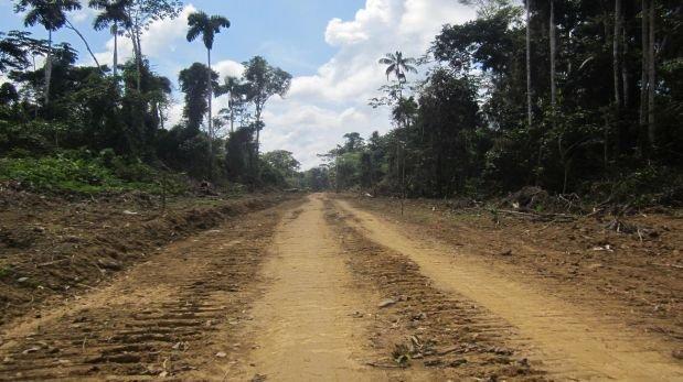 Carretera en Manu