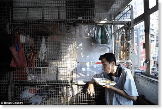 Hong Kong viven en jaulas7