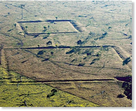 geoglifos en Amazonia 3