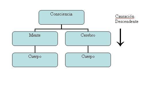 esquema_causación_descendente