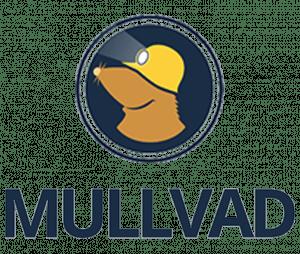 Análisis de Mullvad VPN 2020 - NO ADQUIERAS ESTA VPN ANTES DE LEER ...