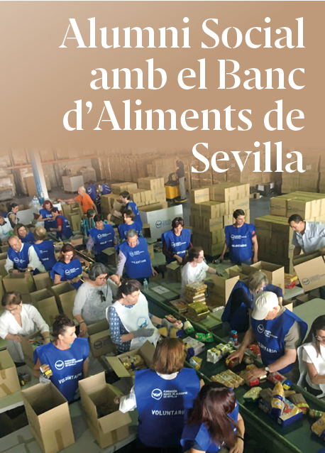 Històries de Consultors Solidaris: Fer el Banc d'aliments de Sevilla més digital i eficient
