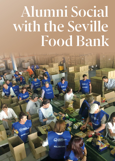 Stories of Pro Bono Consultants: Making the Seville Food Bank More Digital and Efficient