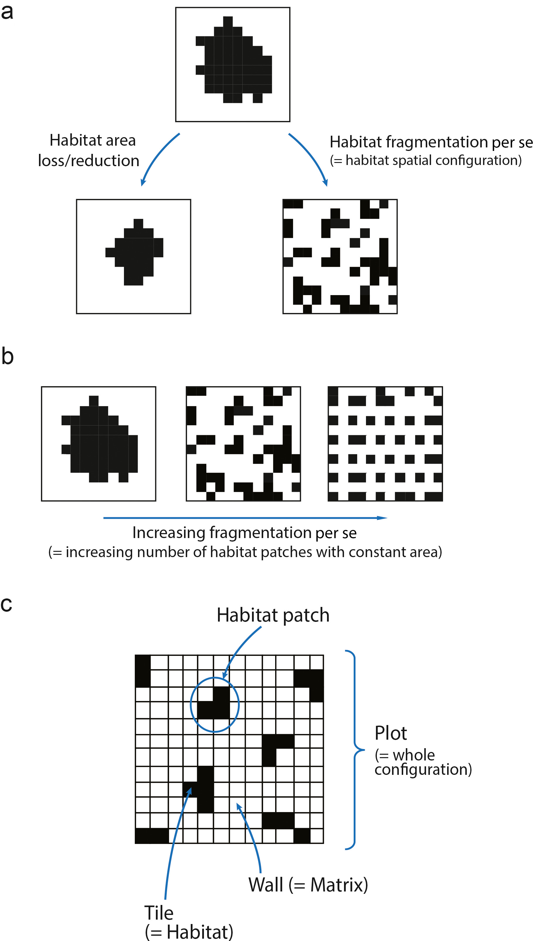 Effects of habitat area and spatial configuration on