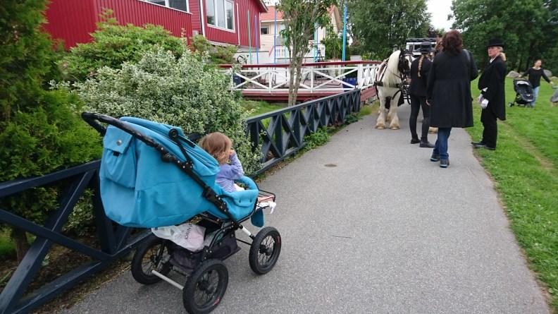 Bryllup. Hest og vogn