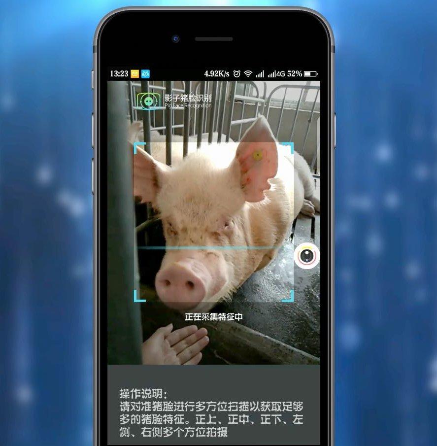 Alors qu'une maladie dévastatrice frappe les porcs du pays, les entreprises s'efforcent de déployer la reconnaissance faciale et vocale ainsi que d'autres moyens non éprouvés de les sauver.
