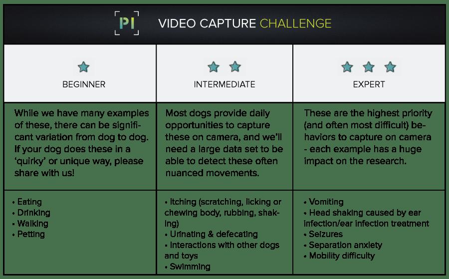 PI video Capture challenge