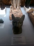 cats_khm_egyptian_bighead