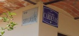 revolucion&cardenassigns_ajijic