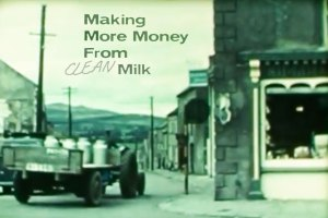 Making Money from Clean Milk, 1966