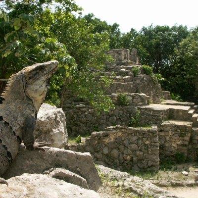 #Estudio: México está en la cima de los países más felices y ecológicos del mundo