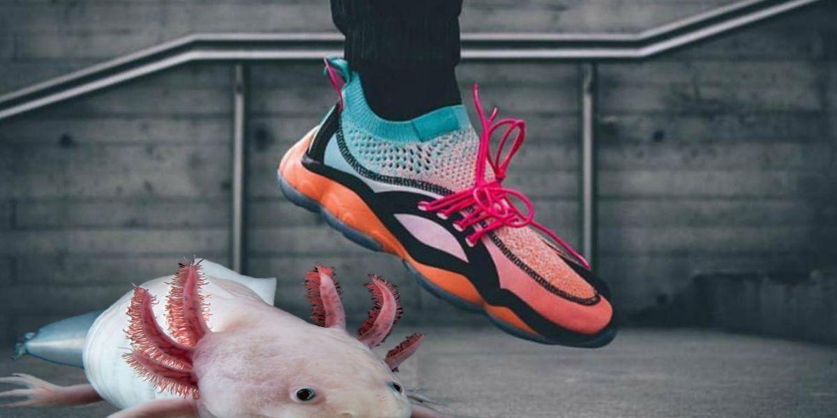 #Chulada: Reebok quiere salvar al axolote con unos tenis de edición limitada