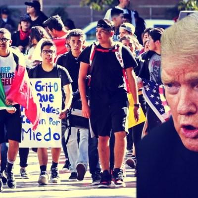 Se acabó la fiesta, ahora a cumplir amenazas; Trump comenzaría redadas de migrantes