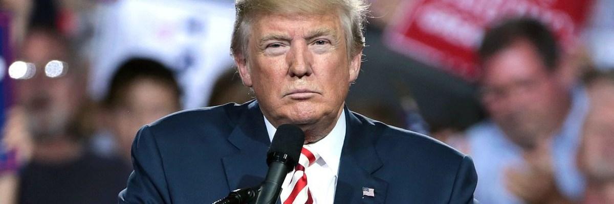Trump dice que gracias al muro, EU no se ha inundado de Covid-19