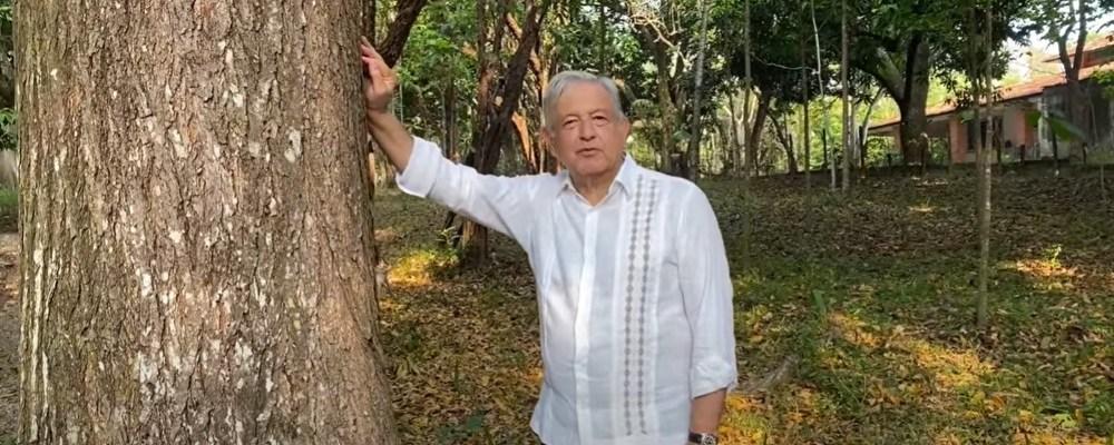 AMLO propondrá a Biden dar ciudadanía a migrantes que siembren árboles