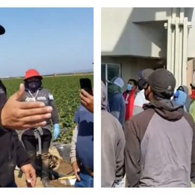 Corren a jornalera por pedir un pago justo; compañeros hacen huelga