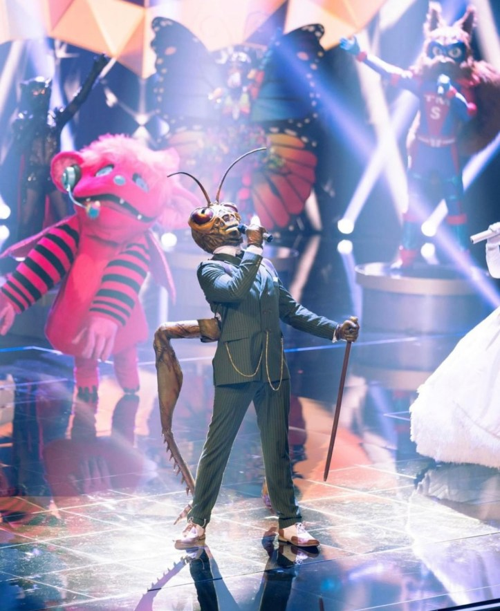 The Masked Singer Grashüpfer 2019 Gil Ofarim