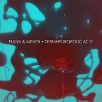 Fujiya & Miyagi - Tetrahydrofolic Acid
