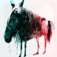 Minihorse - More Time - FYea