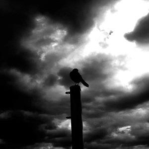 GRMLN - Angel - Afraid Of...