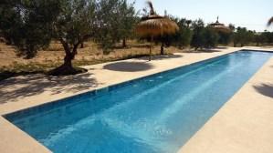 Maison d'hotes à Djerba : piscine