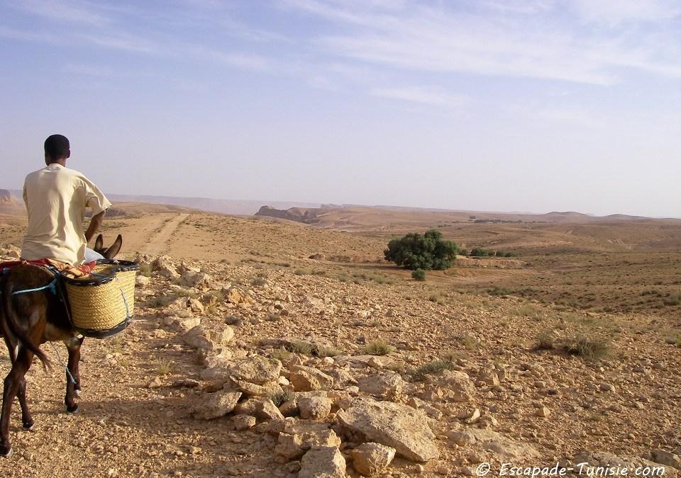 Comment voyager écolo et à petit prix en Tunisie ?