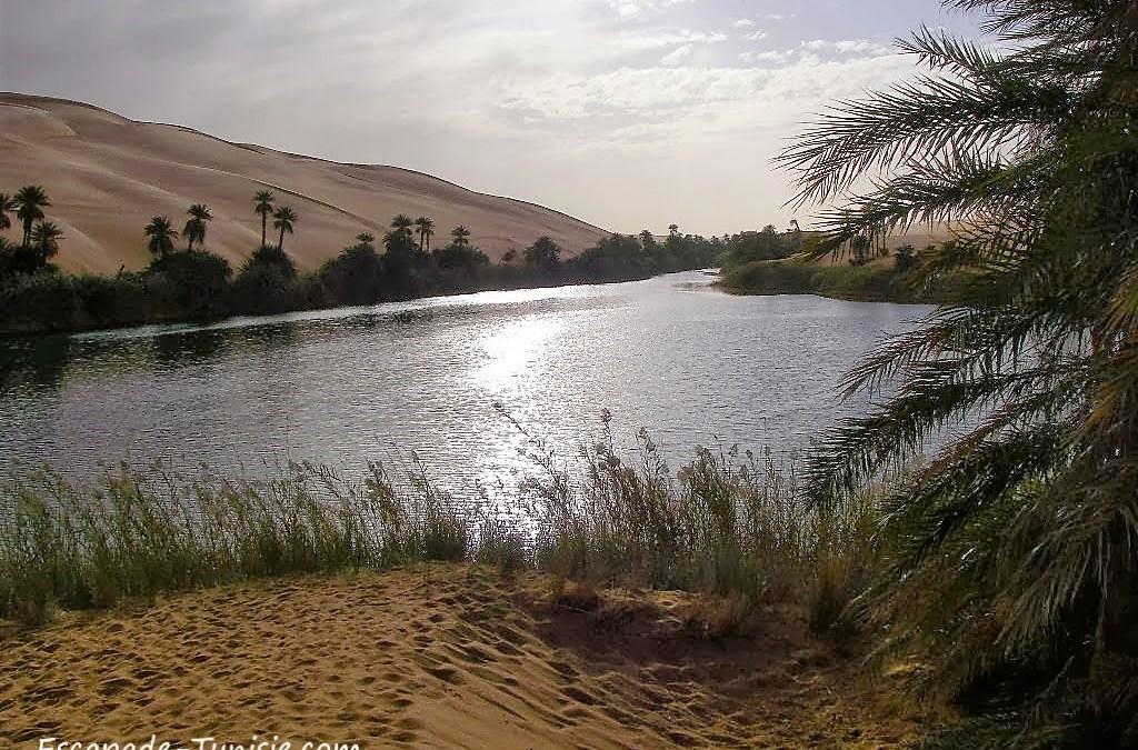 Mon voyage en Libye