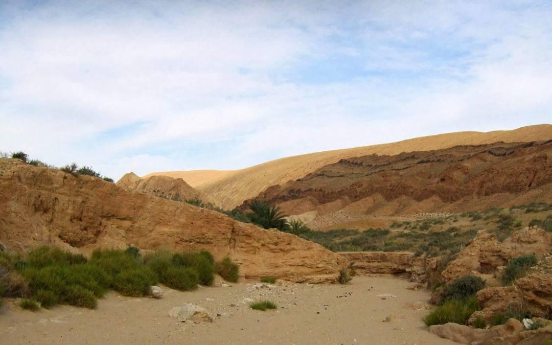 Tozeur : les oasis de montagne en hors-piste (partie 2)
