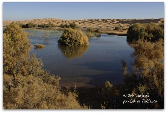 lac sahara tunisie