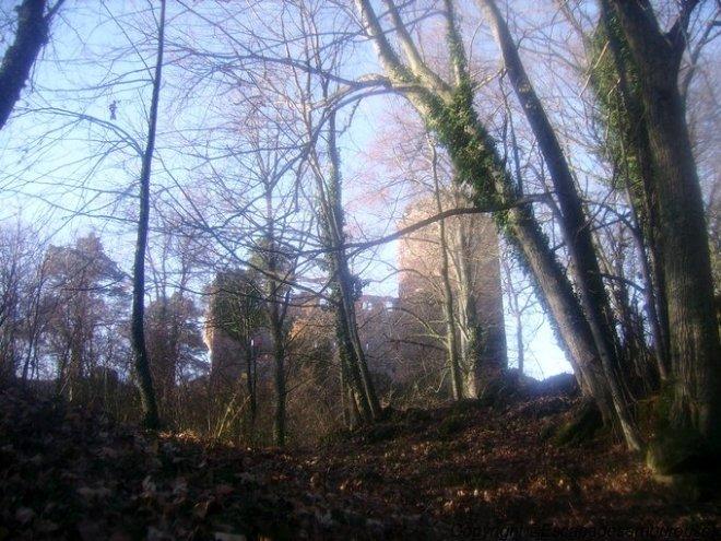 château du Kagenfels01
