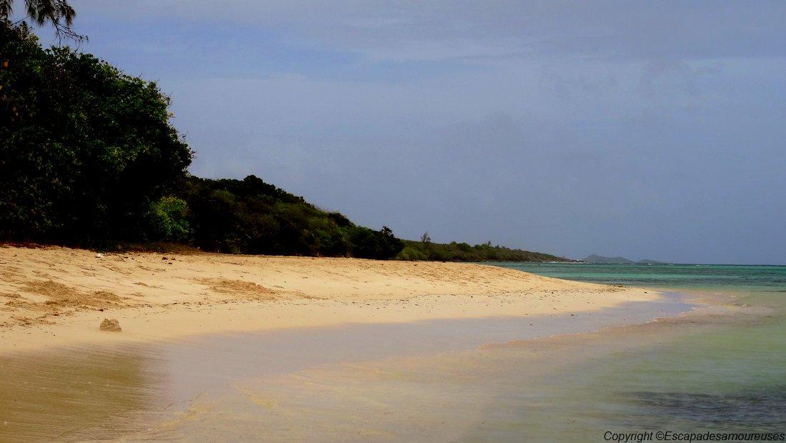 Guadeloupe plage de la coulée
