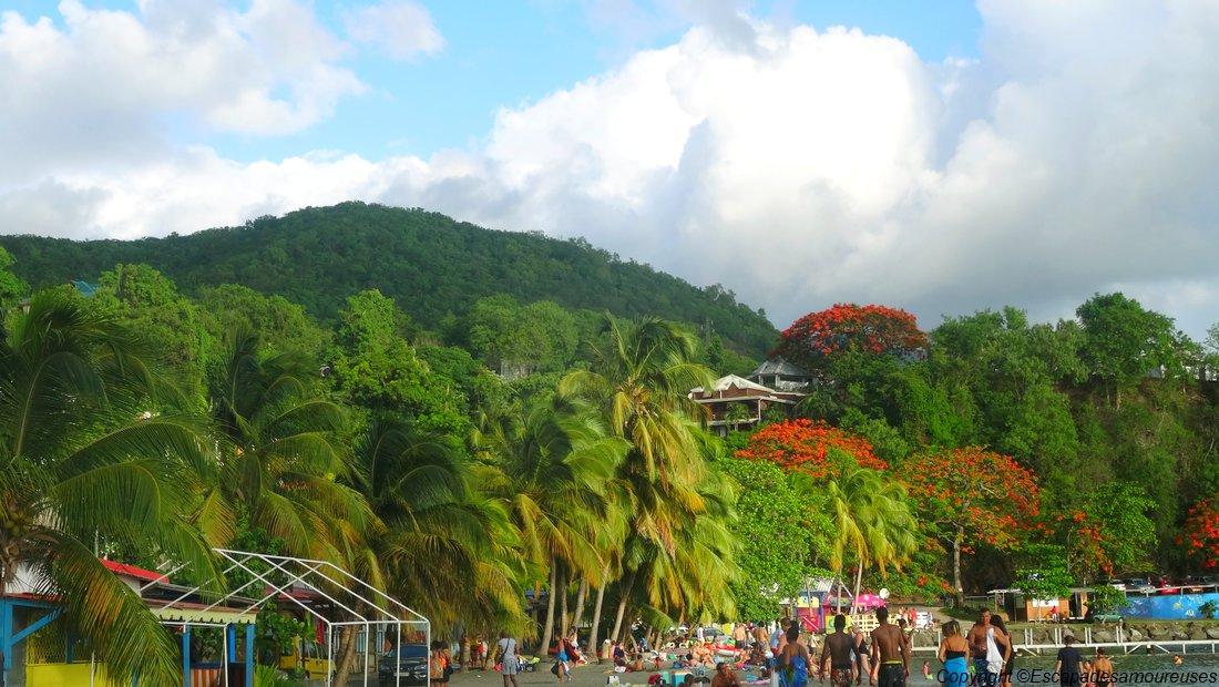Guadeloupe plage malendure