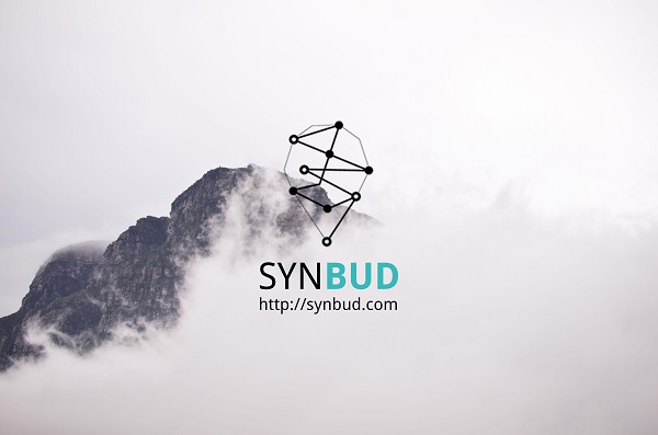 synbud-3