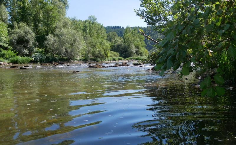 Ambialet Tarn EnFranceaussi bucolique baignade rivière gorges du Tarn