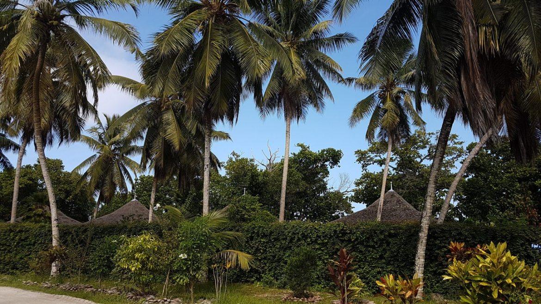 domaine de l'union estate la digue seychelles escapades amoureuses