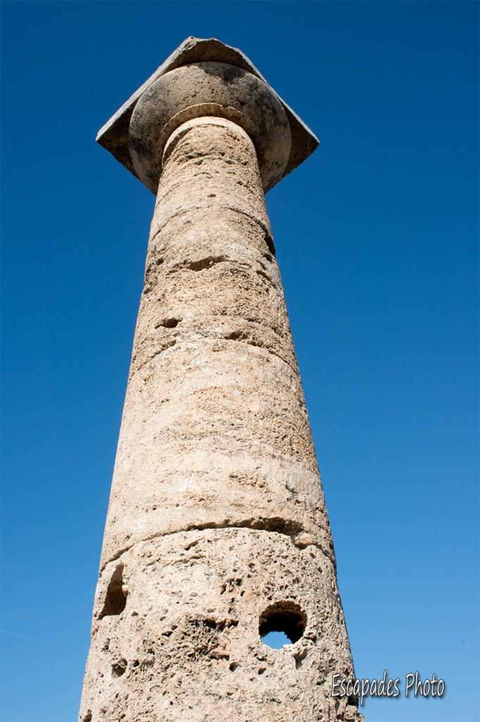 Paestum colonne