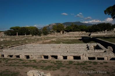 Paestum cité grecque