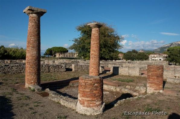 Colonnes de brique à Paestum