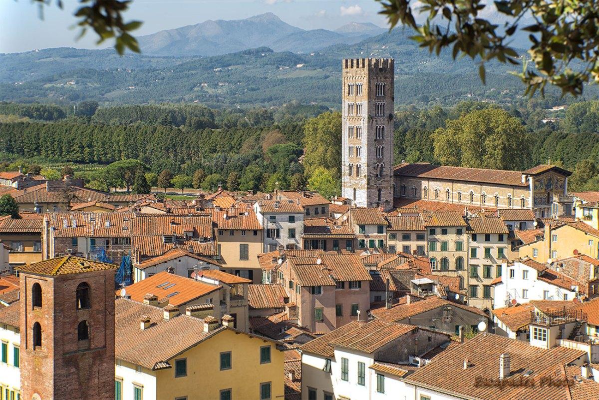 Vue tour Guinigui - la ville de lucques - la basilique San Frediano