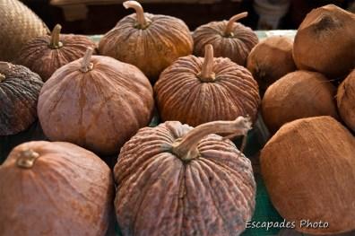 Cucurbitacées et noix de coco - marché de luang namtha