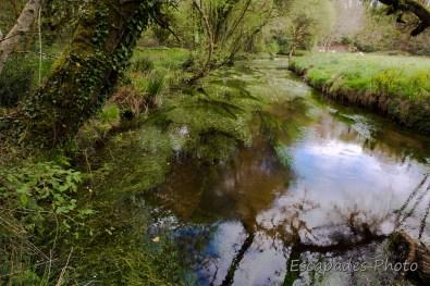 Rivière Naïc - balade de Kérivarc'h
