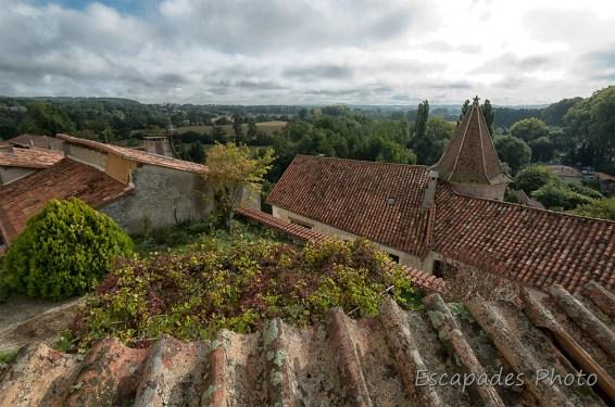 Les toitures d'Aubeterre-sur-Dronne