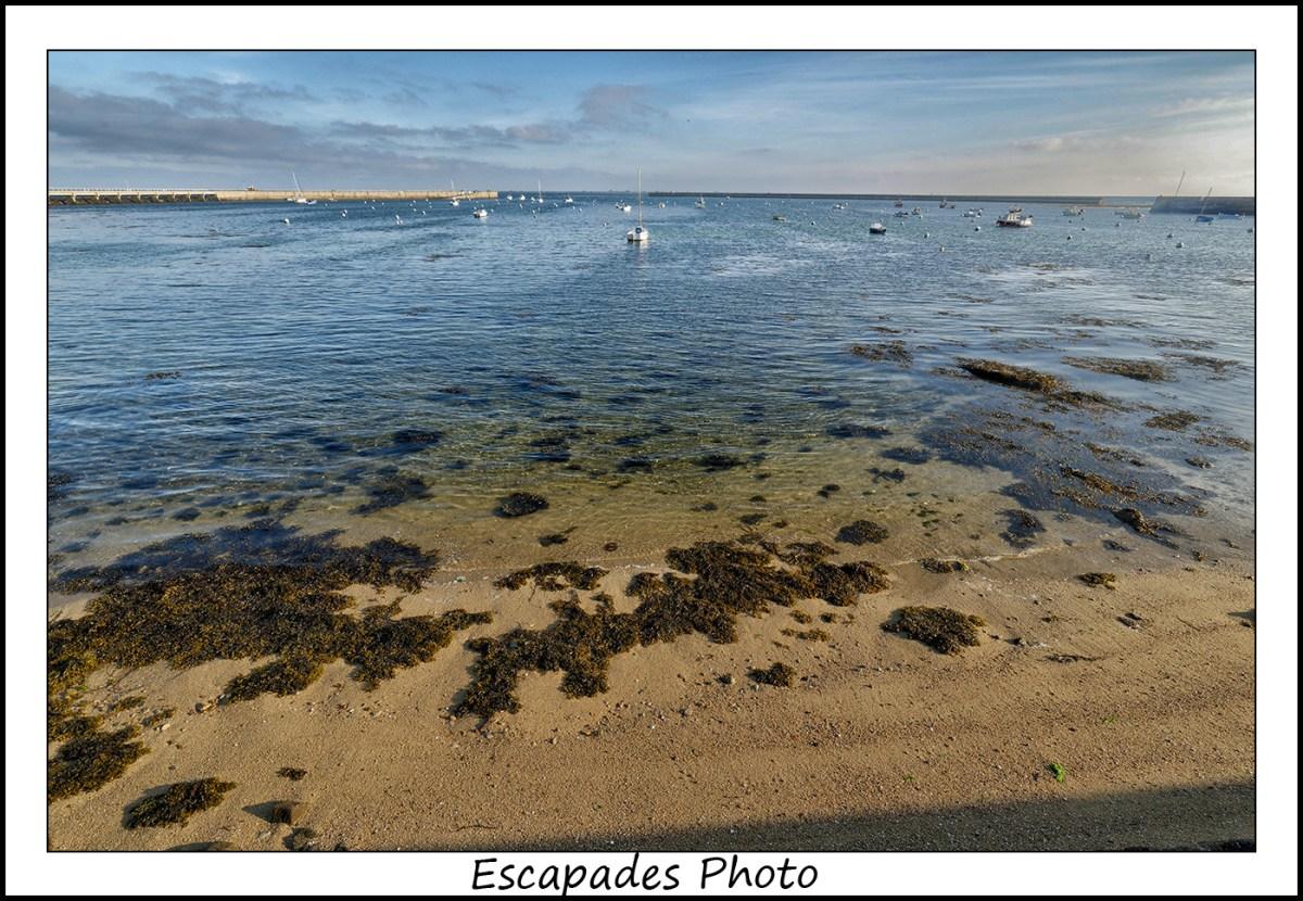 Sable dorée , algues et eaux cristallines à Kérity