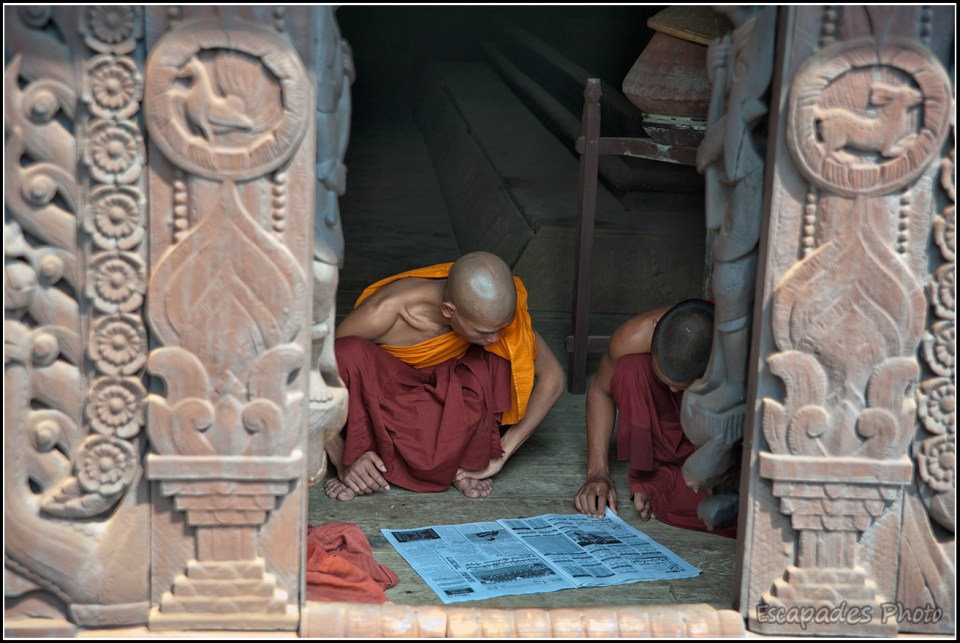 Moines à Shwenandaw Kyaung - La lecture
