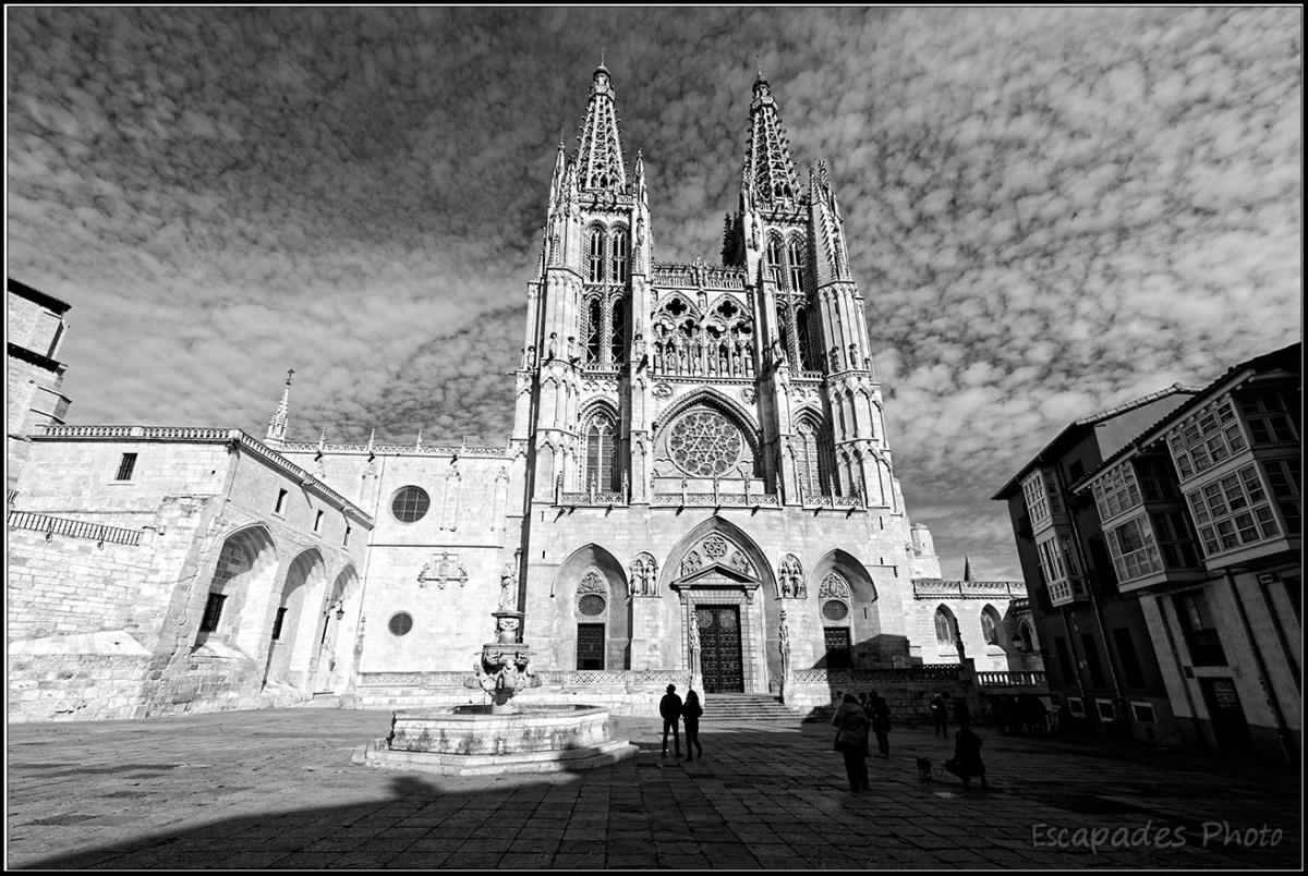 cathédrale gothique Sainte-Marie de burgos et la fontaine
