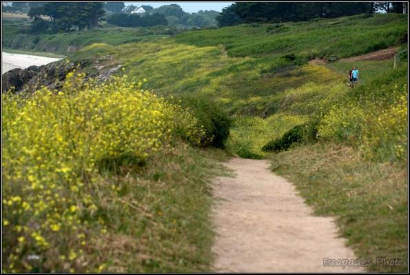 GR34 à Raguénez, un sentier nature