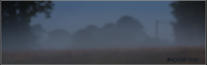 Lune gibbeuse au lever du jour